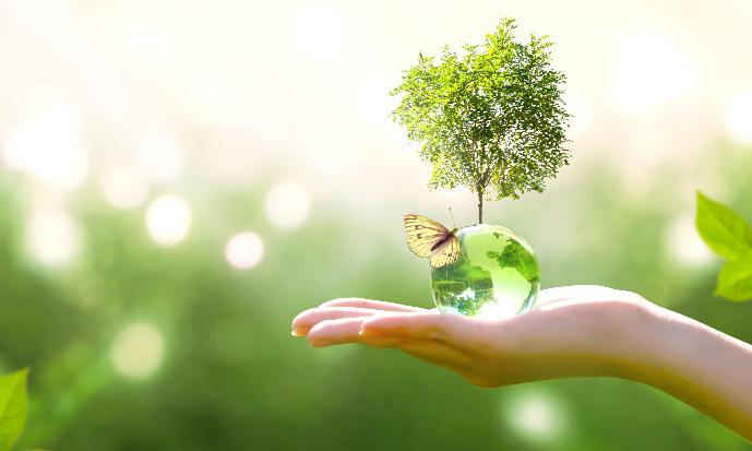 återvinning miljö