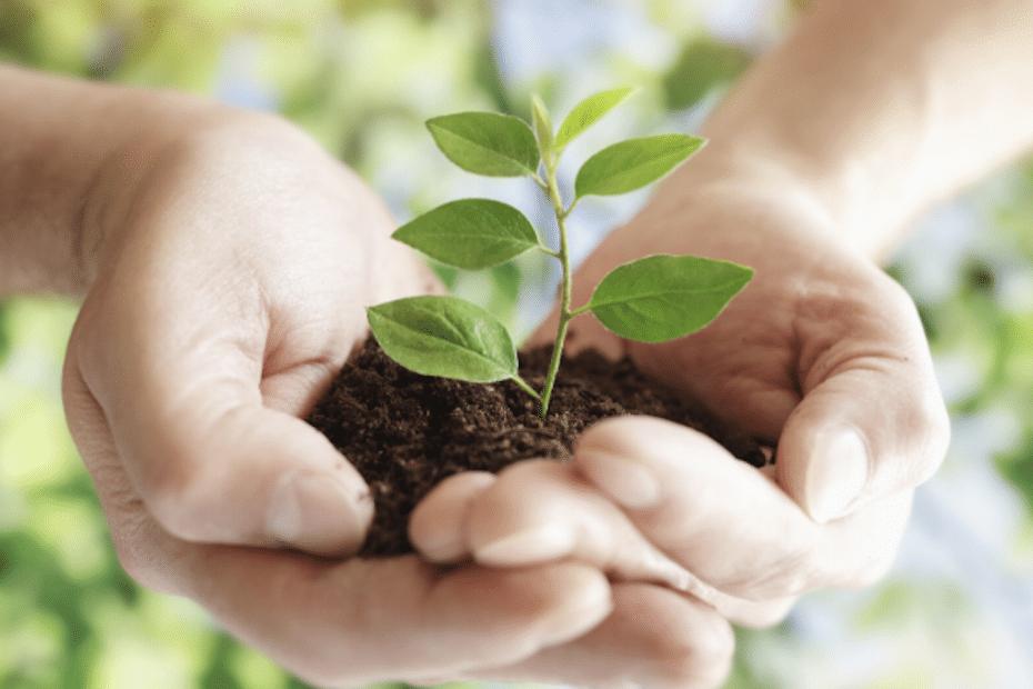 Kvalitet, omtanke och miljö