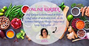 Banner - Online Kurser