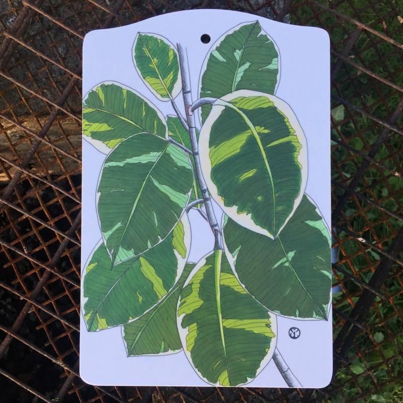 skärbräda med blad