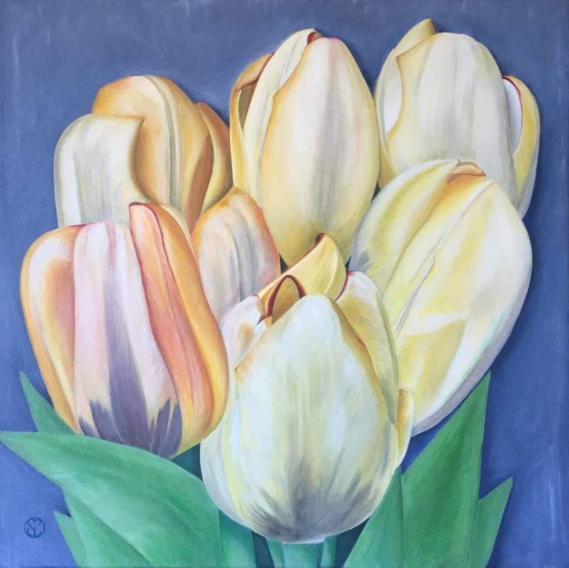 Tulpaner i färg