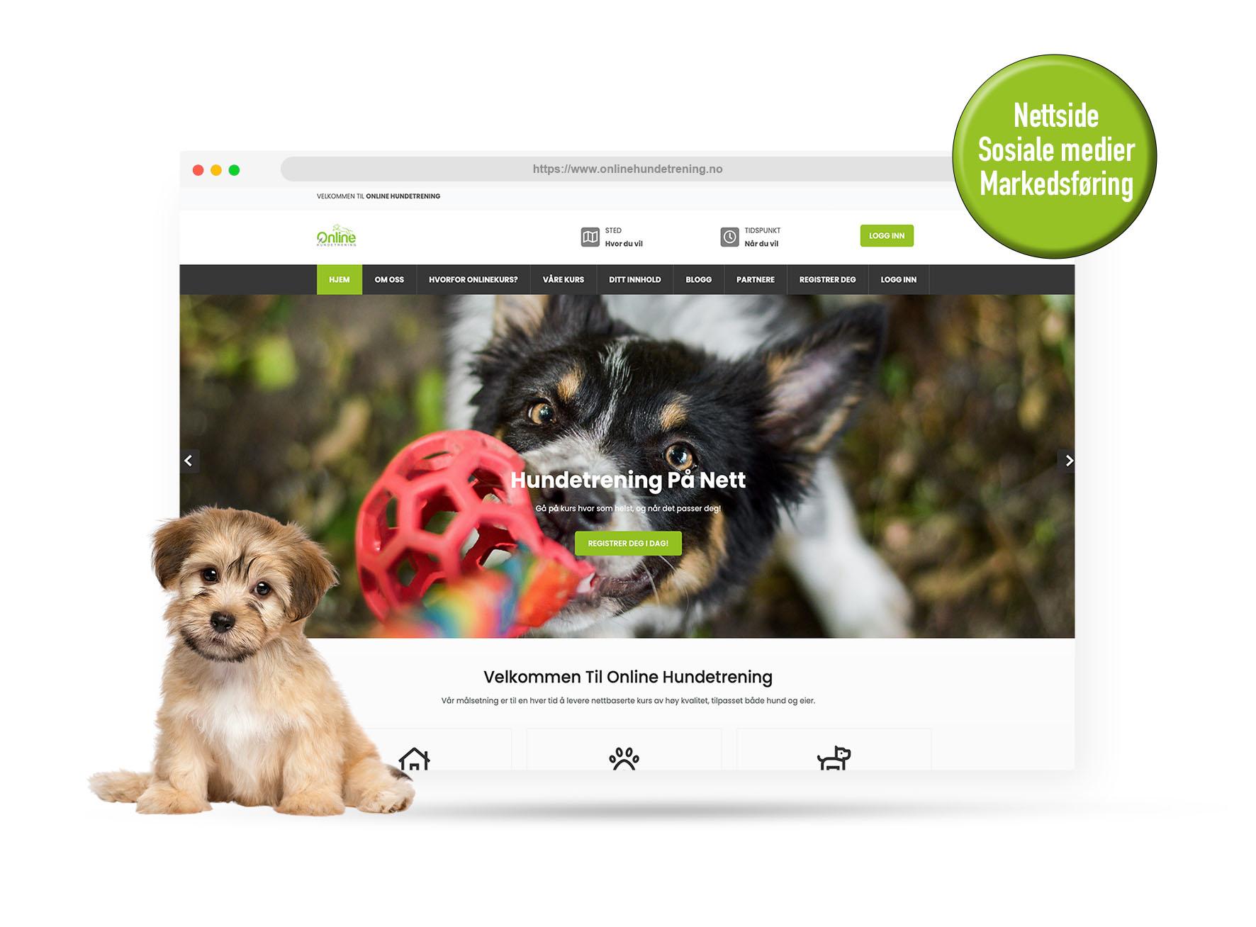 Online hundetrening