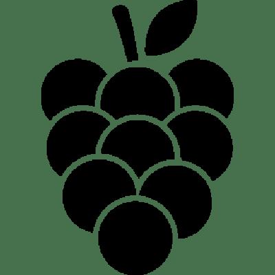 Solkærs Vin