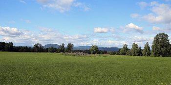 Vikingatida gravfält