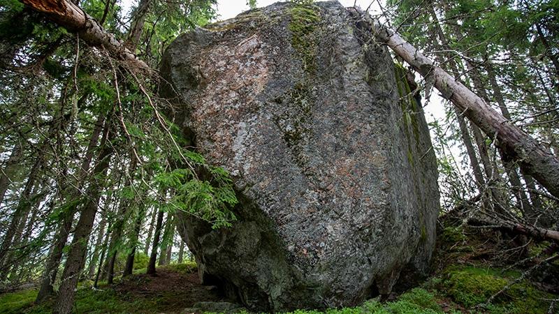 Digerhäll Solleröskogen