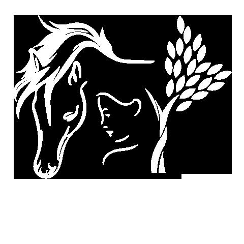 Soulhorses vzw Natuurbeleveingskamp voor kinderen