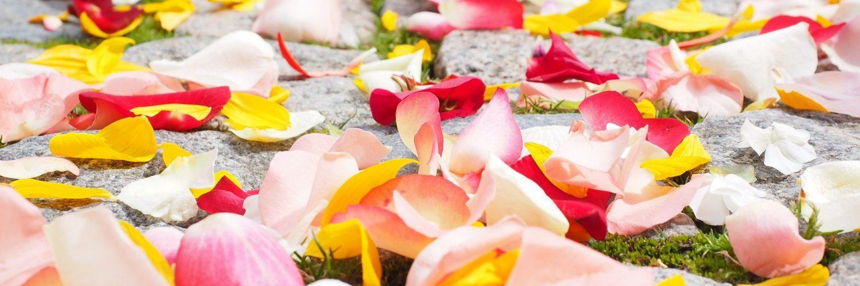rose-petals-693570_1920_Rituale