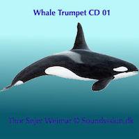 Soundvision.dk - Plusliv Musik mp3 lydfiler