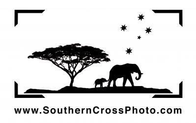 Southern Cross Photo