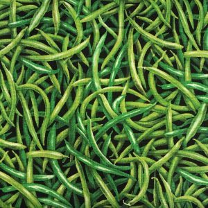 Patchwork stof grøntsager chili
