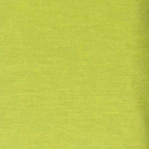 DV limegrøn