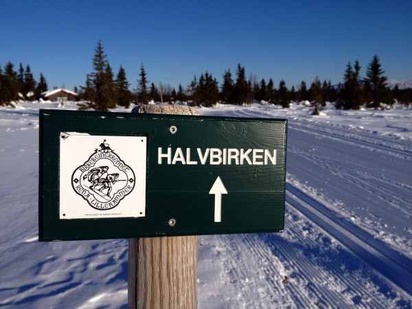HalvBirken starter på Sjusjøen og svinger forbi demningen ved Kroksjøen, langs Kuåsen og over Gjestbodåsen, før den kommer inn på den tradisjonelle Birkebeinerløypen ved Midtfjellkoia. En lett og fin variant til det langt mer krevende Birkebeinerrennet.