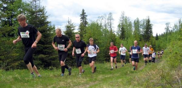 Birkebeinerløpet2013-pulje3-15