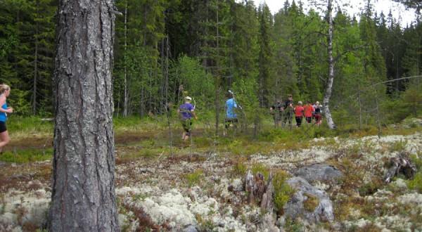 Birkebeinerløpet2013-stemning42
