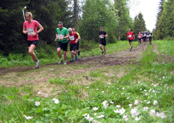 Birkebeinerløpet2013-stemning6