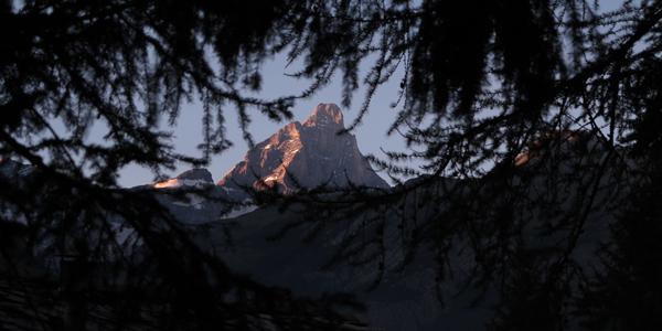 LucaRoncoroni_bilde18