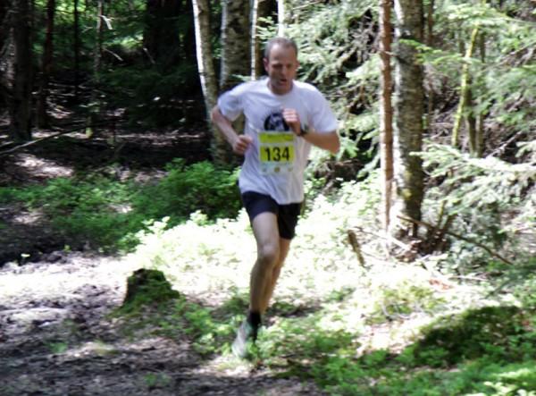 Skogen-2-Harald-Ringen