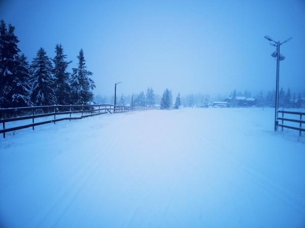 Sjusjoen langrennsarena Foto Visit Sjusjøen-