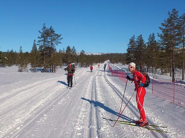 Birken2014_mot-Skramstad2-RolfBakken