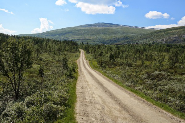 Blogg2014-Rondane