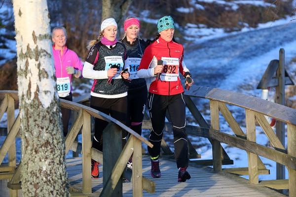 Vinterkarusellen-Fetsund-17Januar2015_Pikene-pa-broen