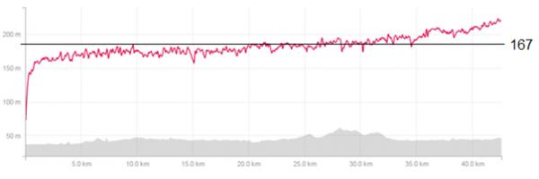 Pulskurve Berlin Marathon 2014: Snittpuls 167 (ca terskelpuls), makspuls 183
