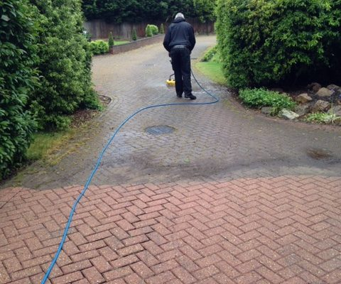 driveway-pressure-washing-services
