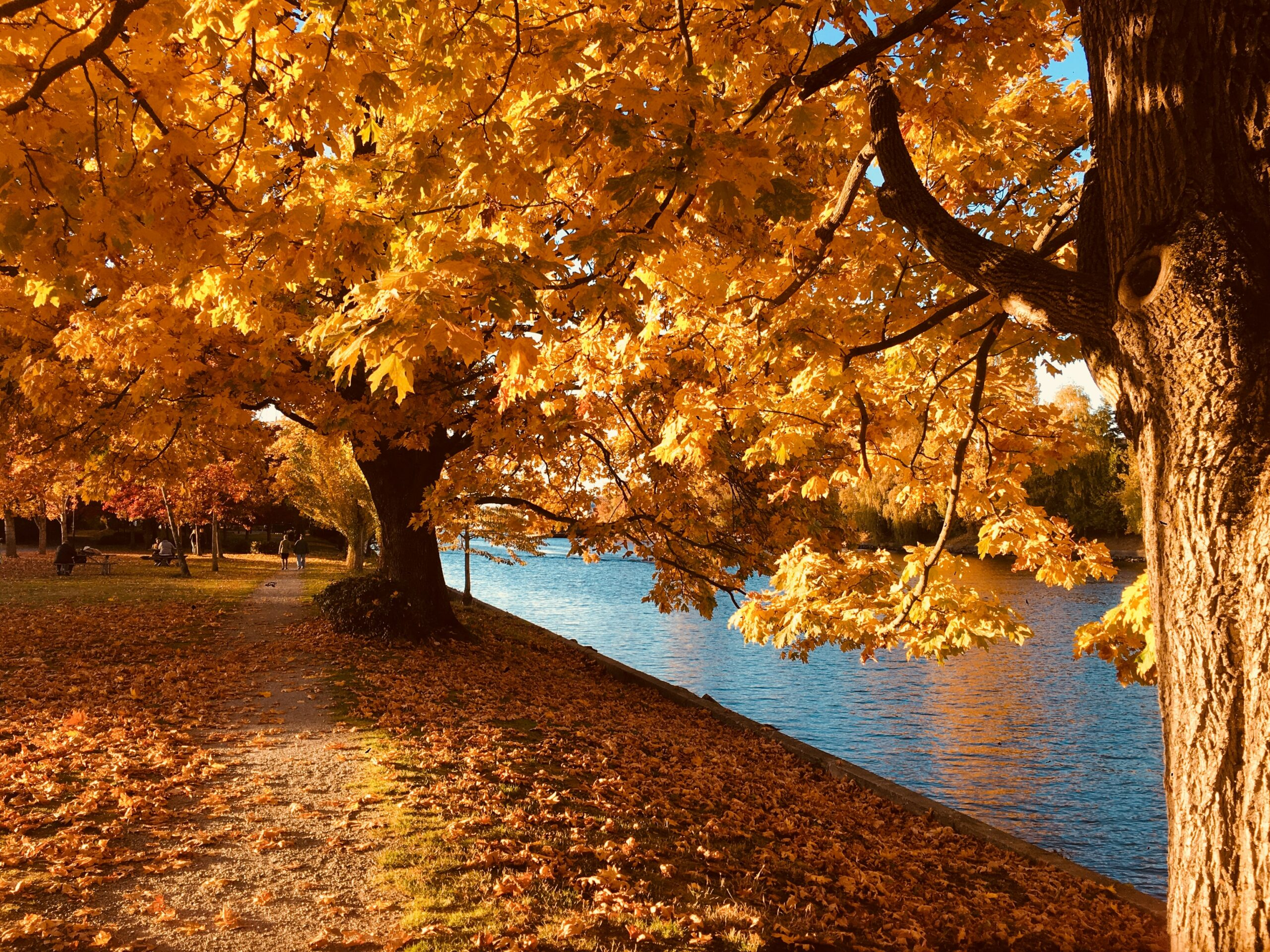 The first day of fall – Autumnal Equinox