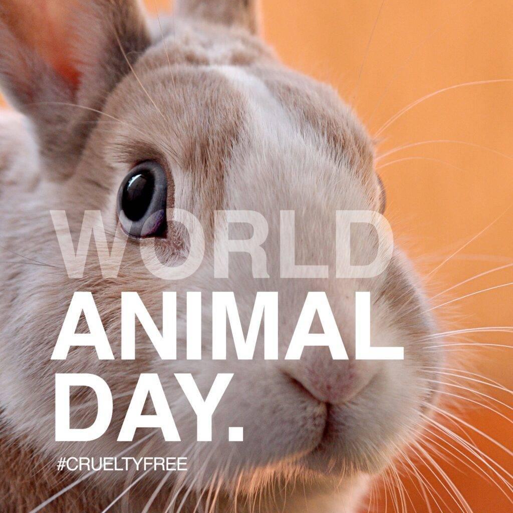 World Animal Day - Cruelty-free skincare