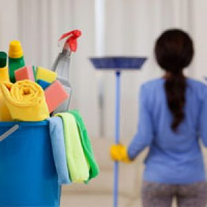 Squeaky Cleaning Services