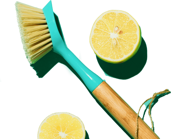 Eco washing up brush and lemons