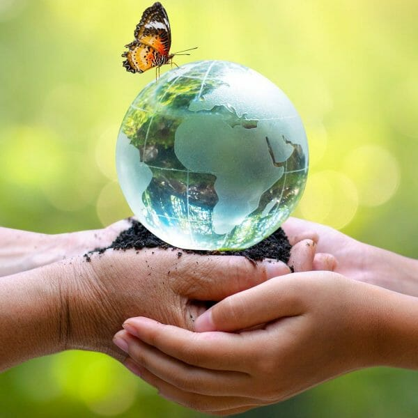 hands holding earth globe with butterfly on top