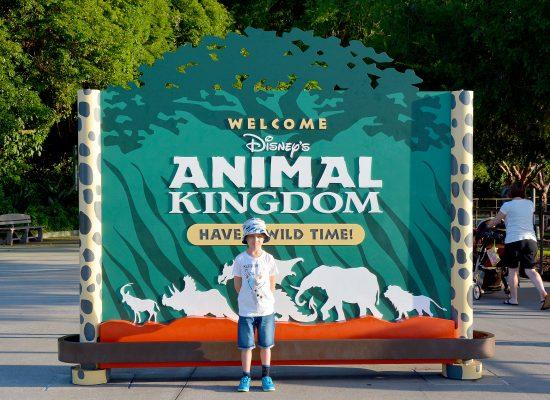 Animal Kingdom Walt Disney World