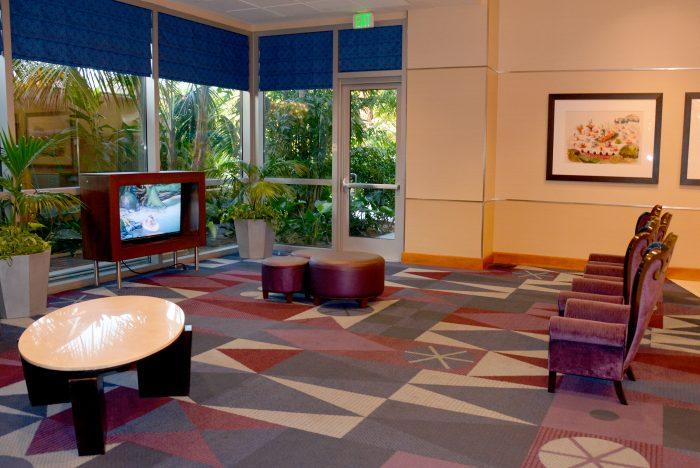 reception tv disneyland hotel
