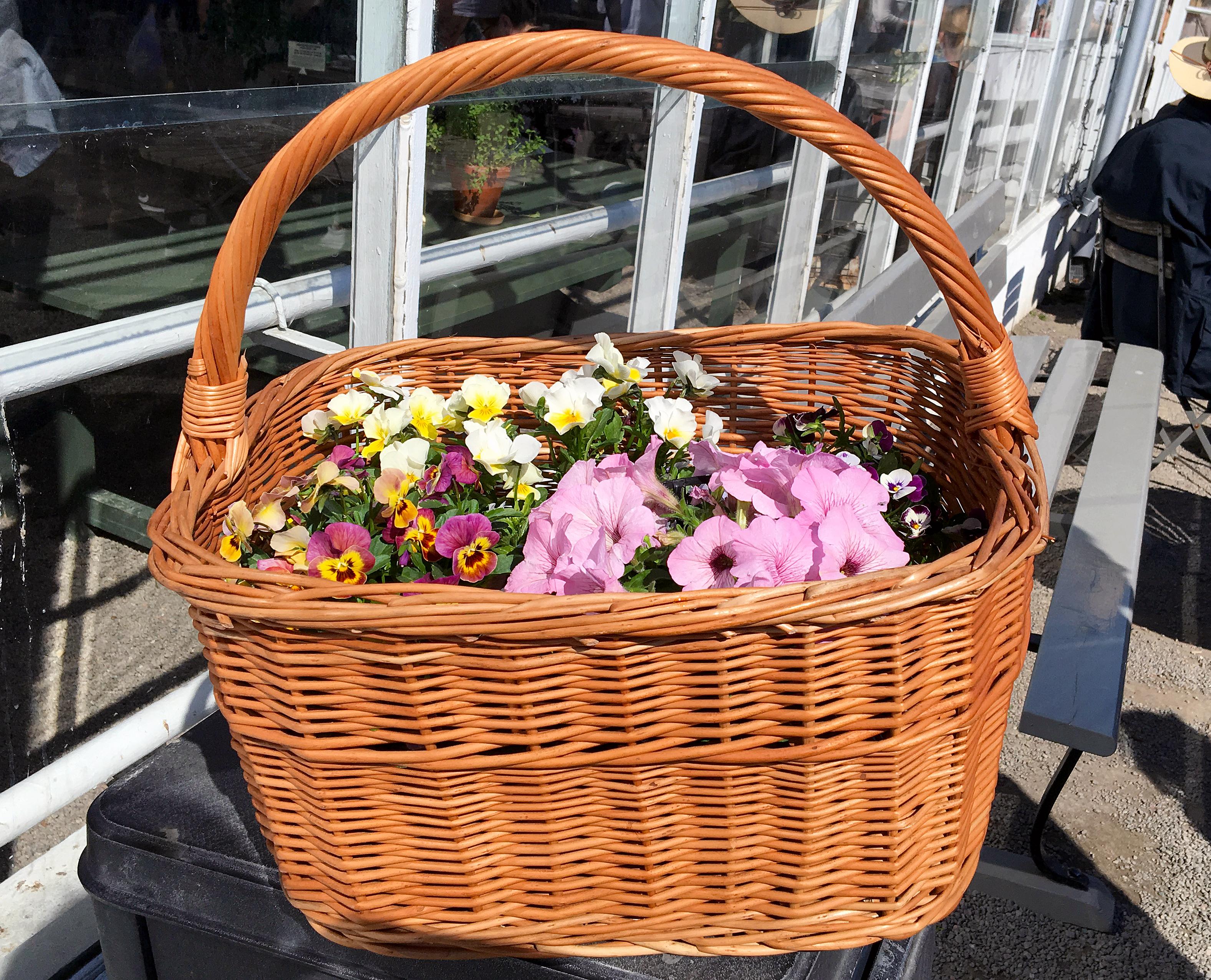 blommor rosendals trädgård