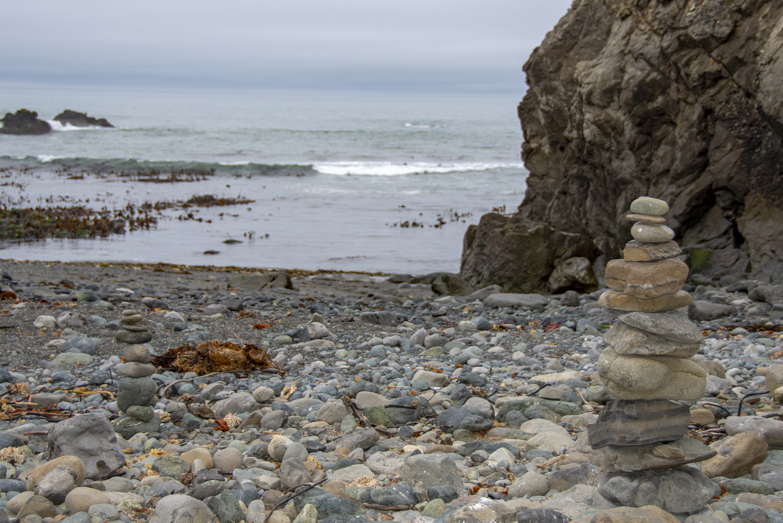 stenar tide pool gualala