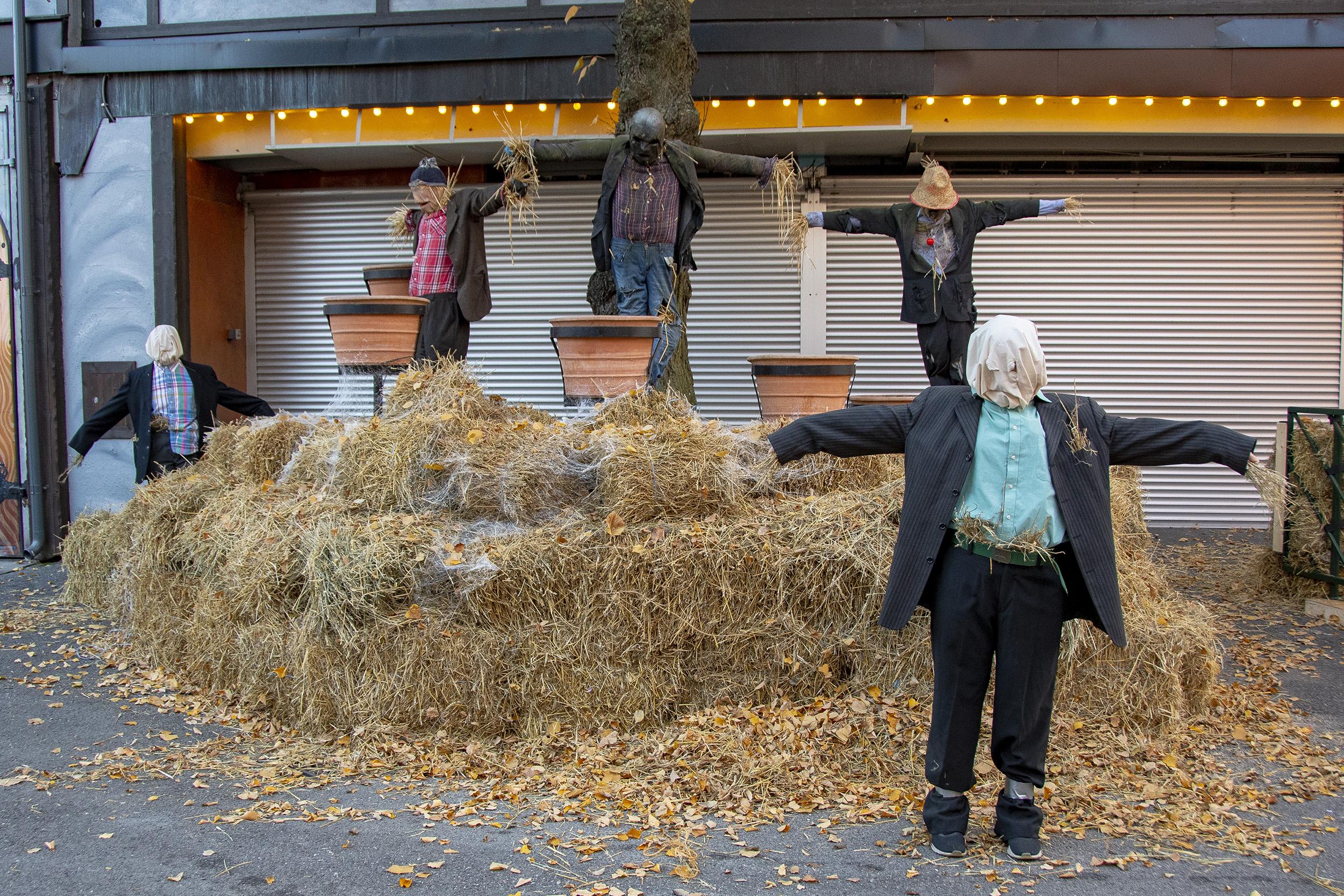 Halloween på Gröna Lund