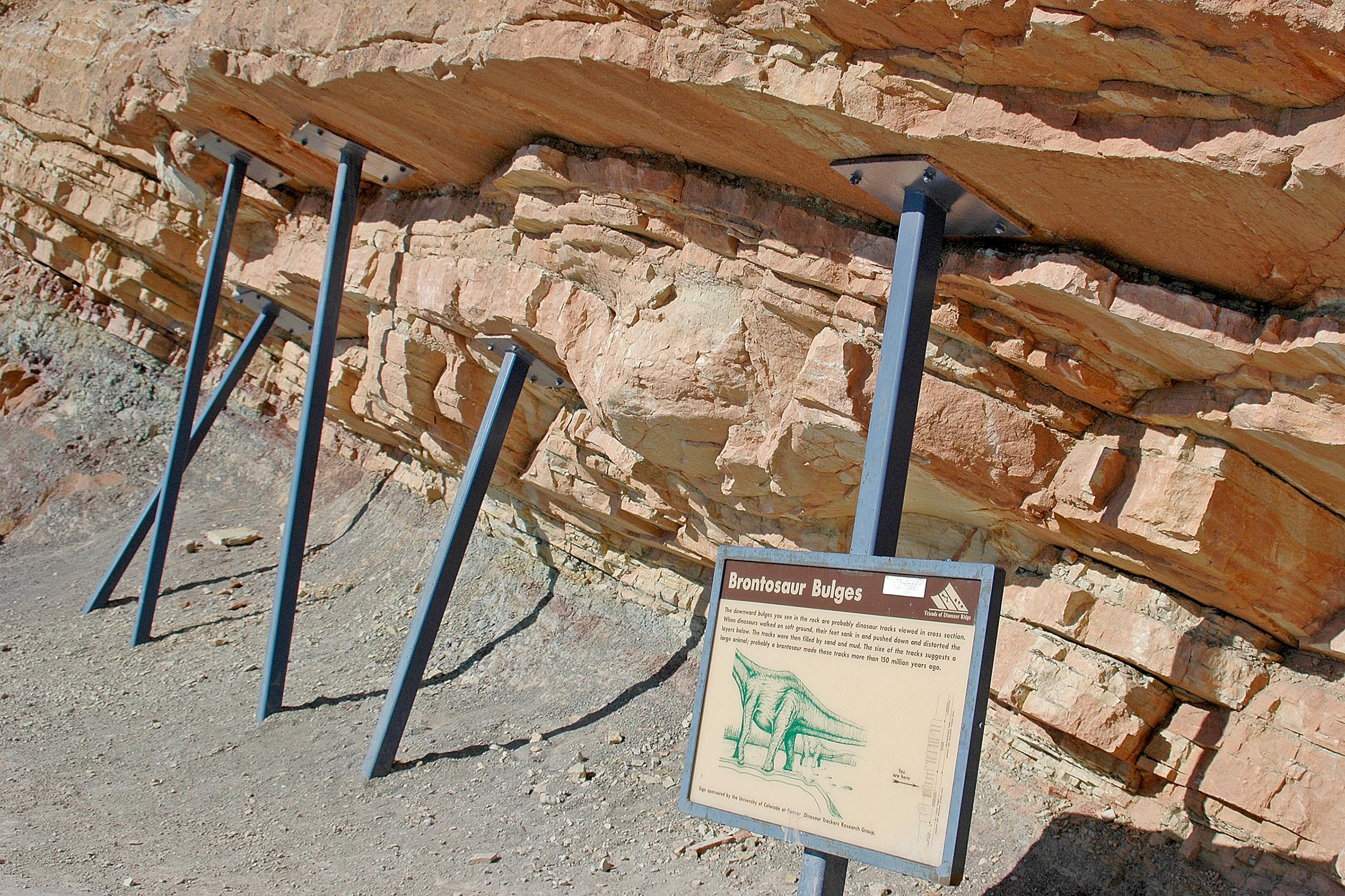 Brontosaurus Dinosaur Ridge denver colorado