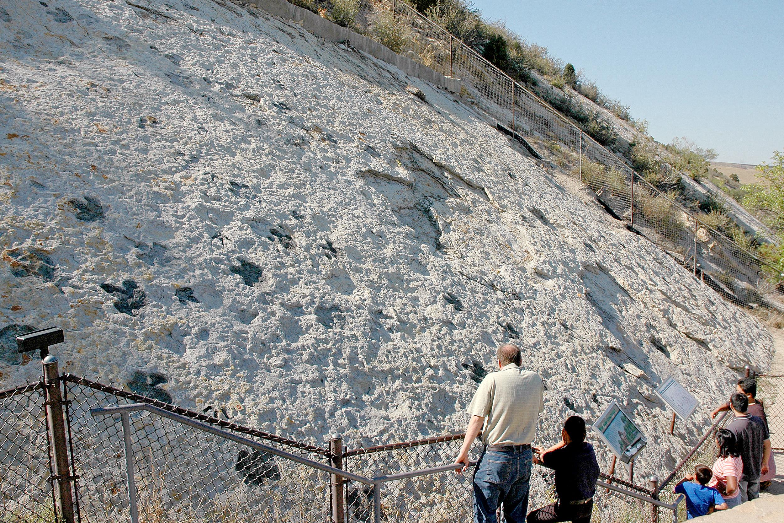 Dinosaur Ridge Denver Colorado