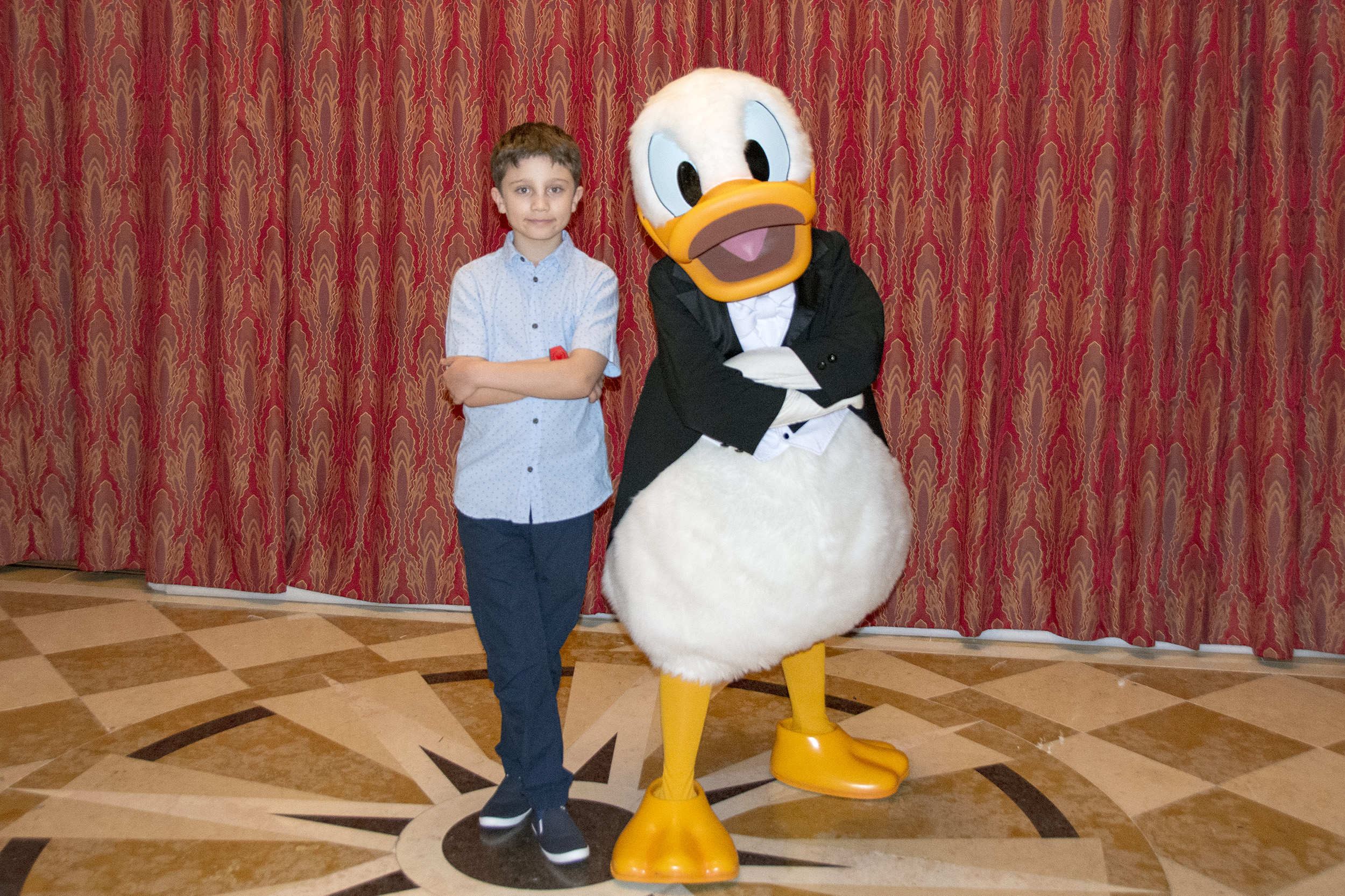 Donald Duck Disney Dream