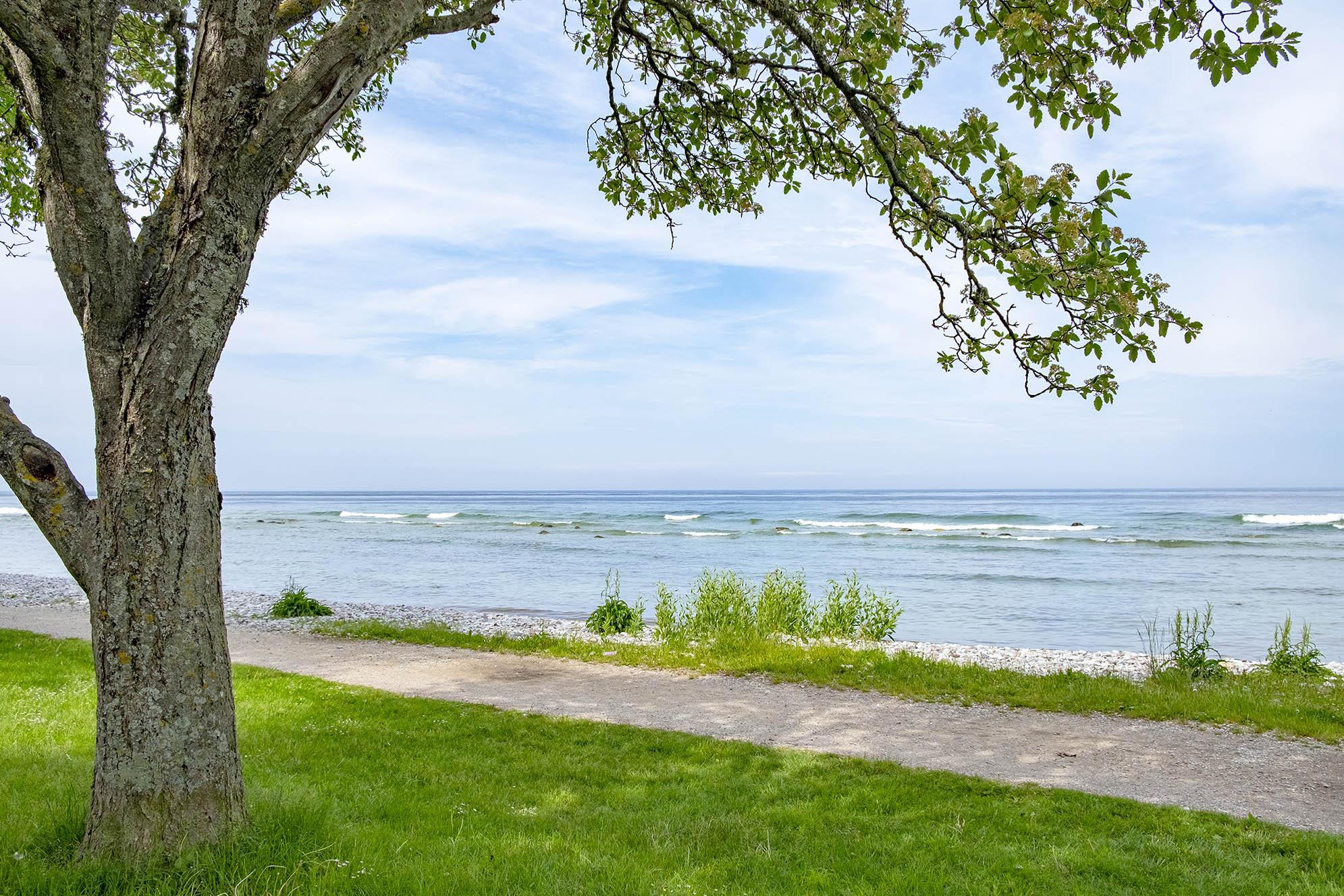 Havet Visby Gotland