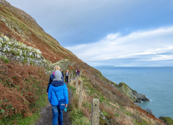 The Cliff Walk Bray Greystones
