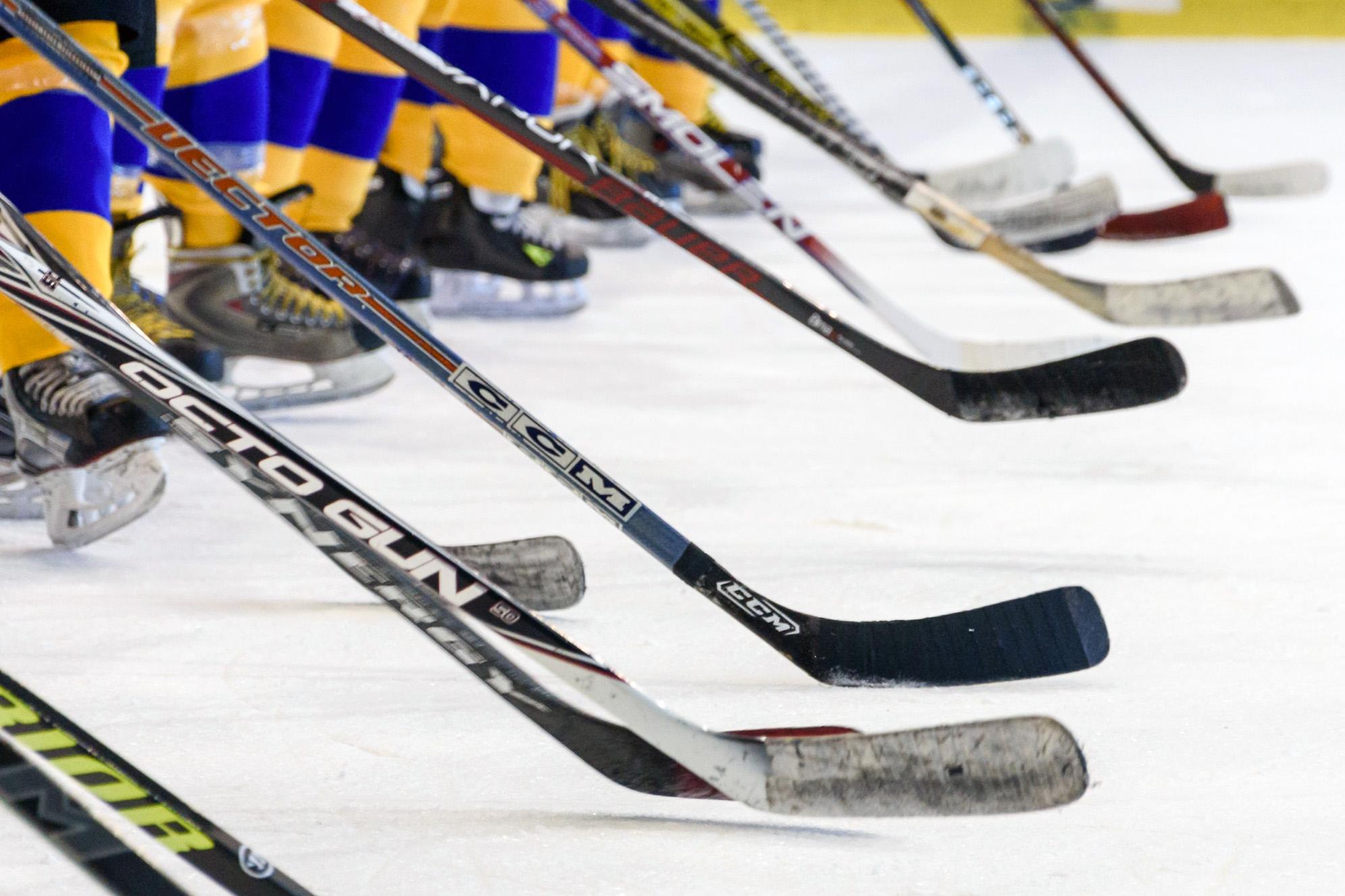 hockey nhl sportresor
