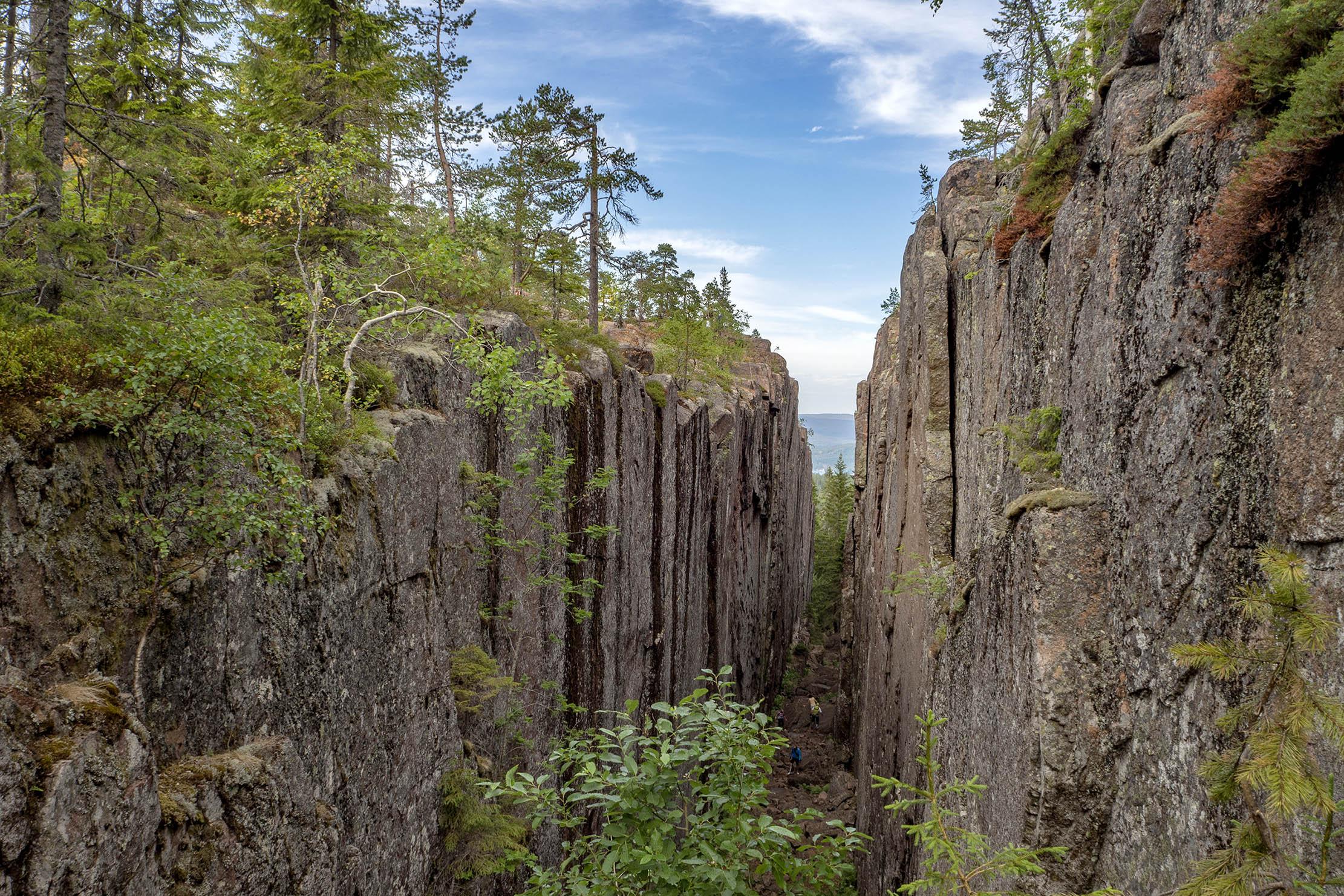 Semester i Sverige Skuleskogen