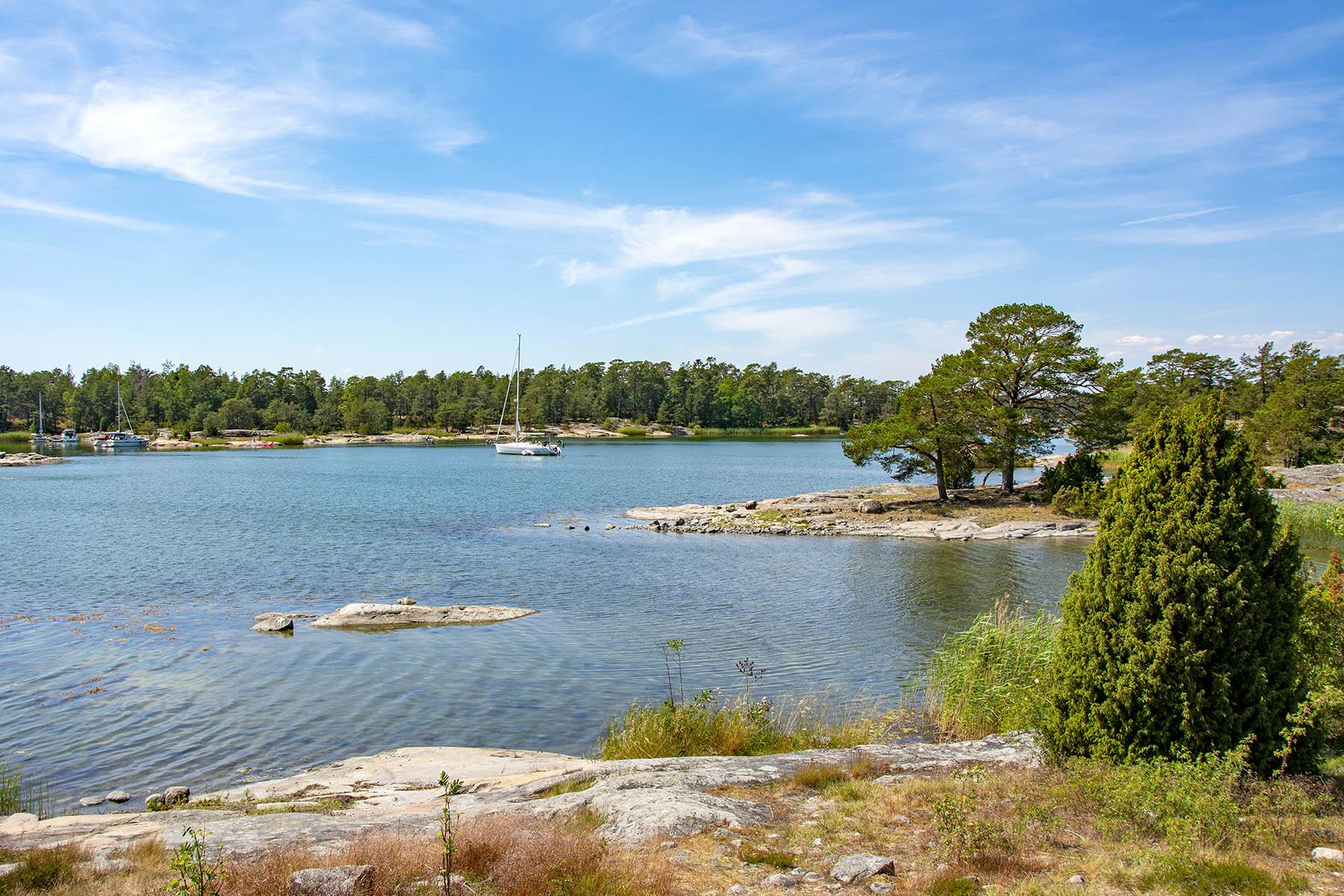 Utsikt från Naturum i Stendörrens naturreservat.