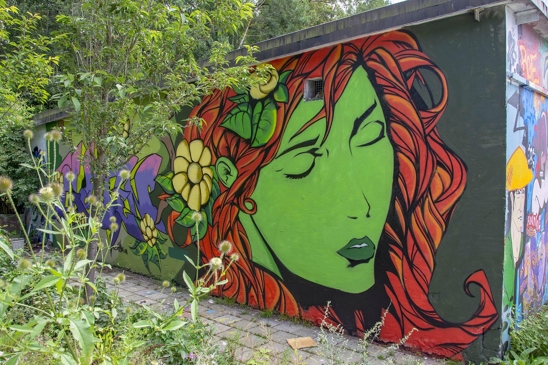 Snösätra gatukonst graffiti Street art