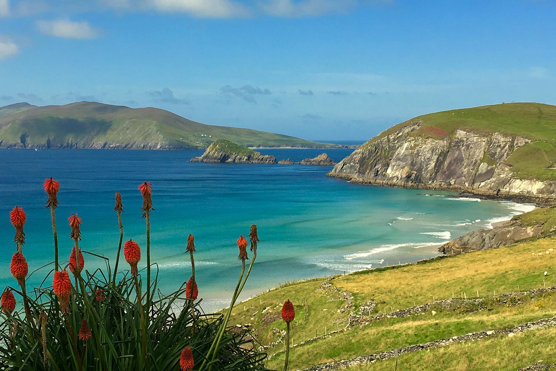 Dingle Irland