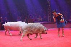 Lars Hölscher und Leide, Schweinerevue, Premiere 1. Winterprogramm Circus Krone in München  2019