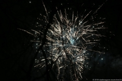 Silvester Feuerwerk auf der Theresienwiese in München 2018
