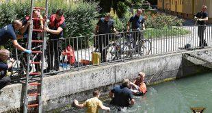 Mann will Entenküken retten und gerät in Lebensgefahr Quelle Foto Feuerwehr München